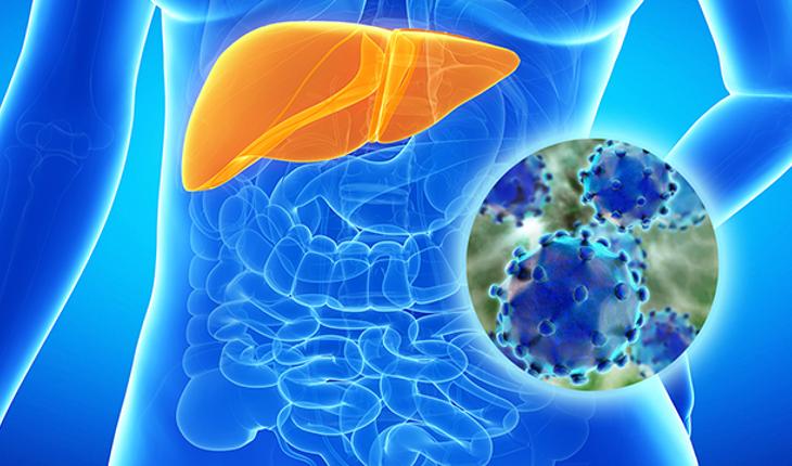 Hepatitis C — what is it?