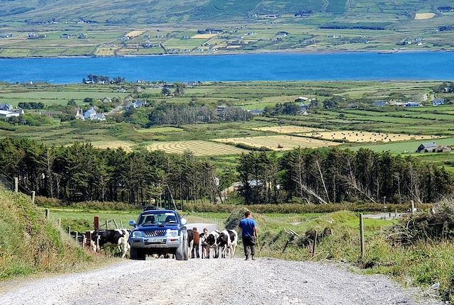 Ring of Kerry Road in Ireland #1