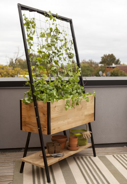 Apex Planter with Trellis and Shelf
