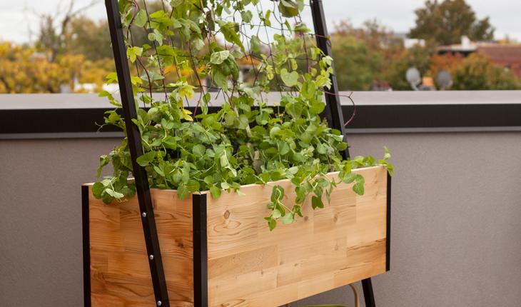 Apex Planter with Trellis and Shelf
