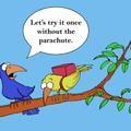 BirdImgSlideshow