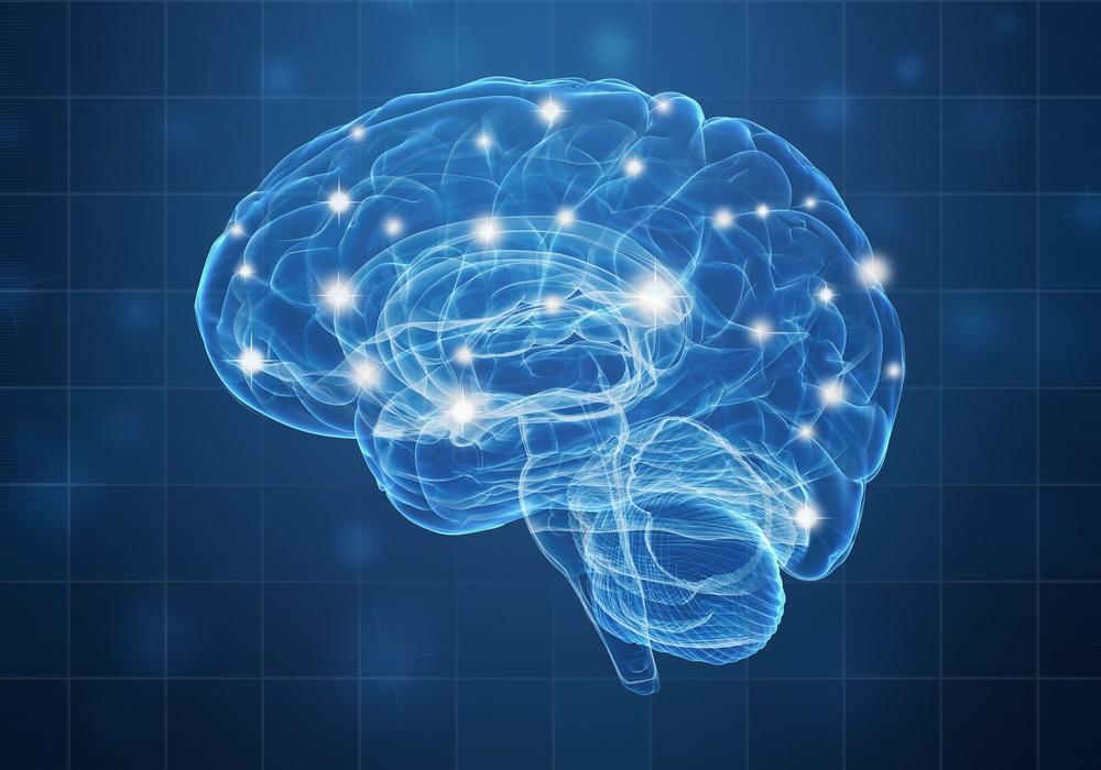 brain-cell-network
