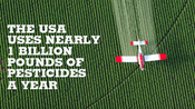 Why Does Pesticide Use Matter?