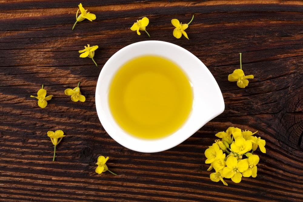 canola-oil-bowl