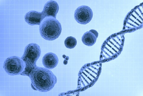 Cells and DNA Double Helix