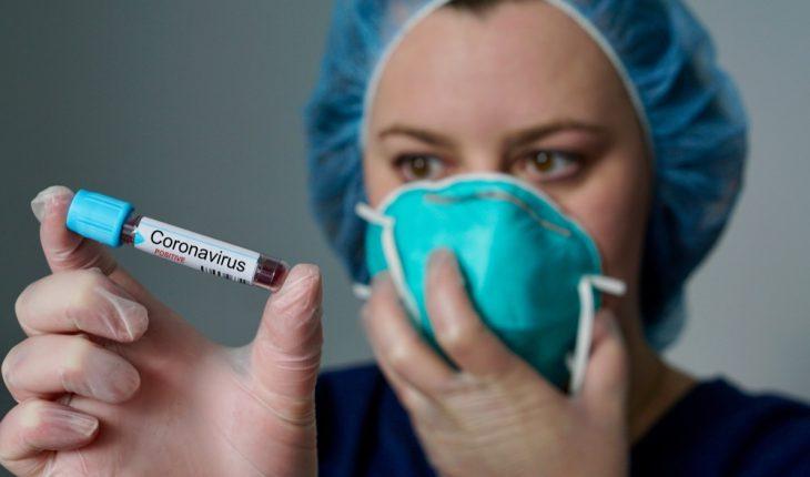 coronavirus-investigator