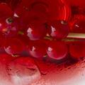 CranberryMartiniB