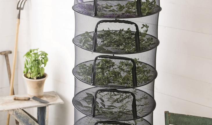 drying-herbs_photo_credit_gardeners-supply-company-copy
