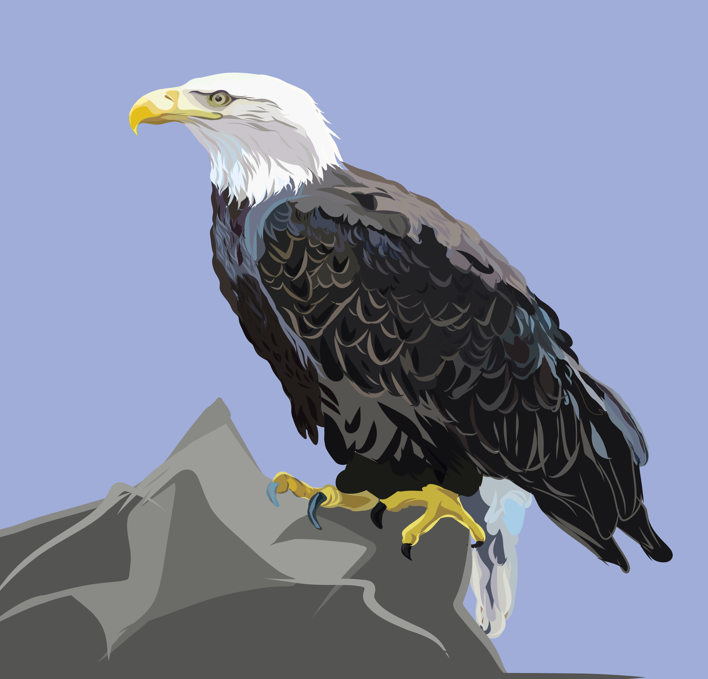 eagle on mountaintop