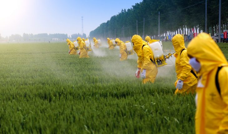farmers-and-pesticide-spraying