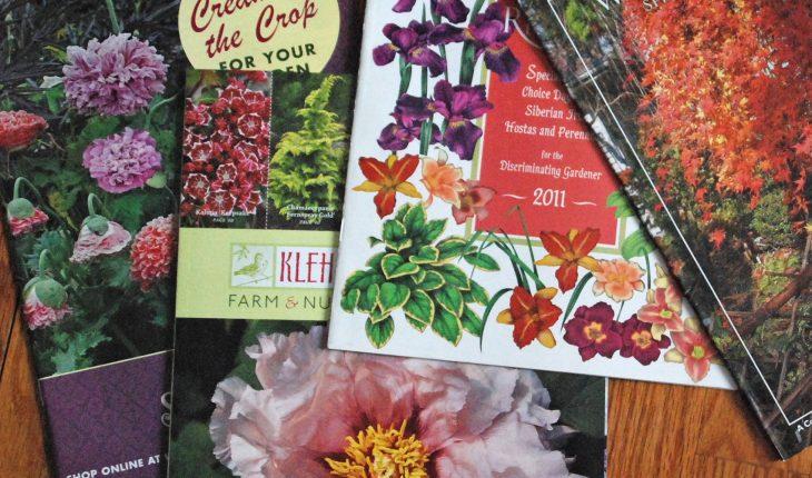 garden catalogues