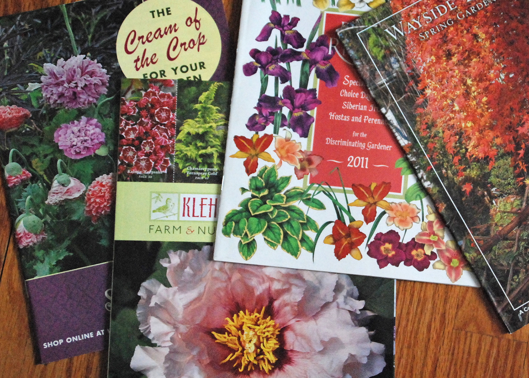 garden catalogues