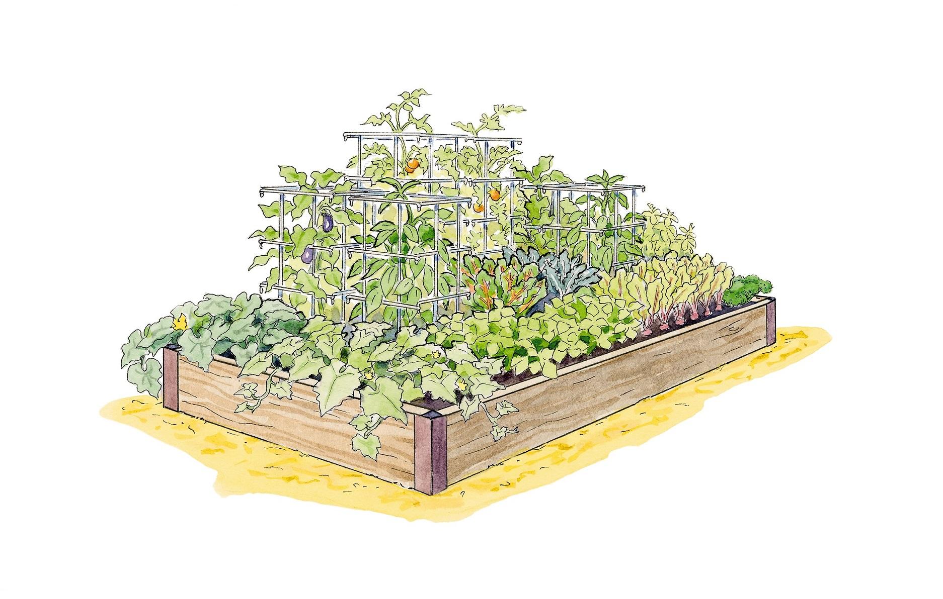 High Yield Garden Plan