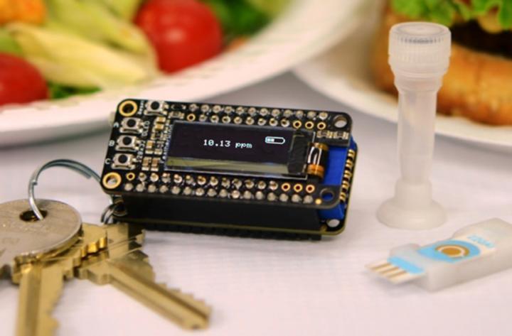 keychain-food-allergy-detector
