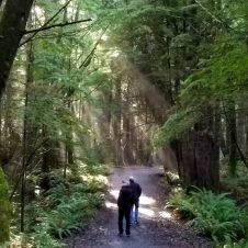 Land's End hike