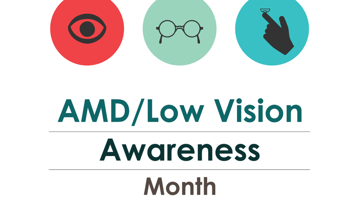 Low Vision Awareness Month, February