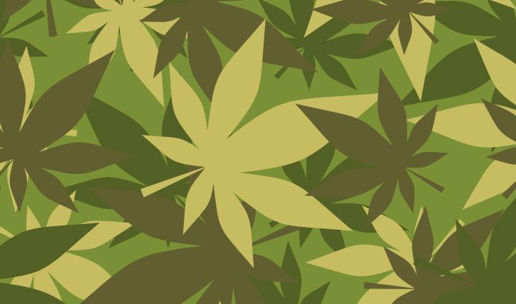 PTSD Marijuana