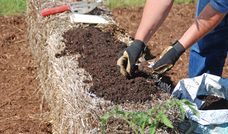 Planting a Straw Bale Garden