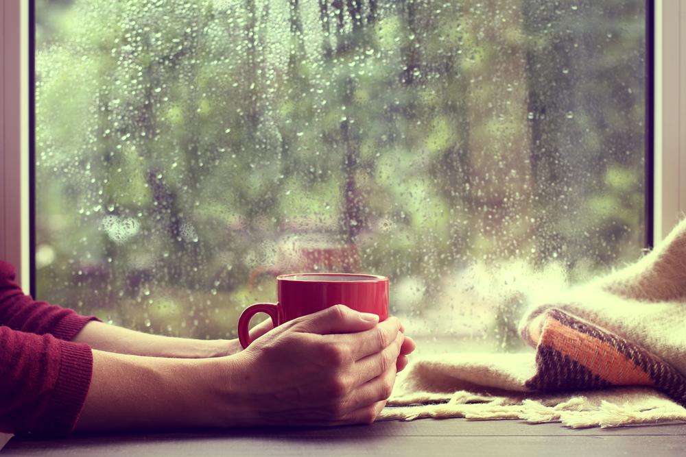 rain on the windowpane