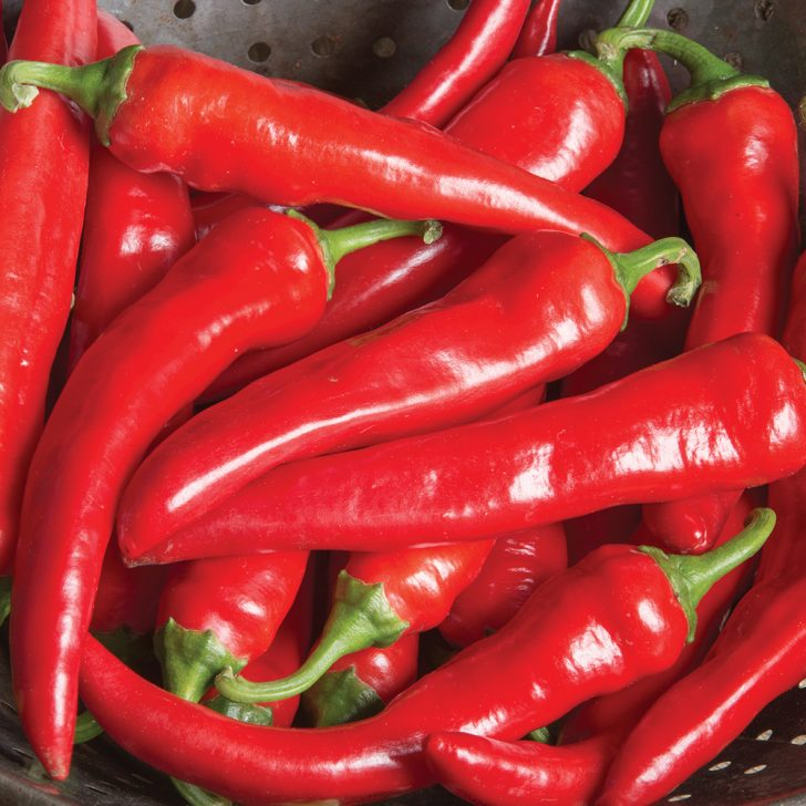 red_ember_pepper_photo_credit_all_america_selections