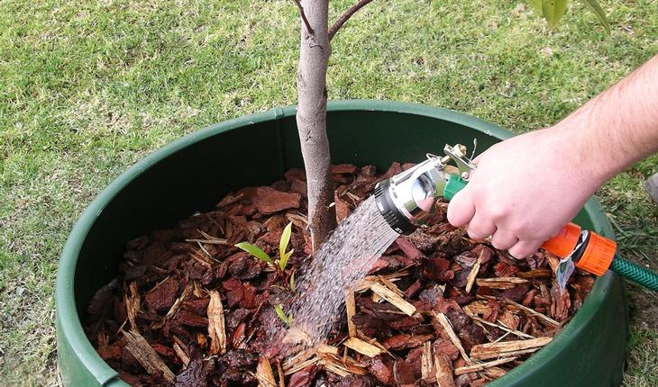 Tree_Watering_GreenWell_Water_Saver_2017