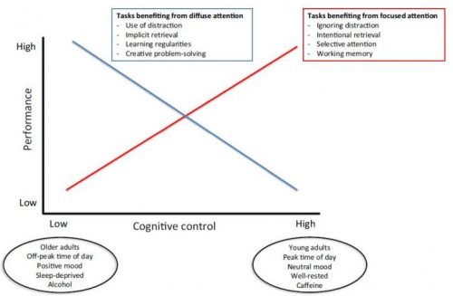 aging-brain-distractions