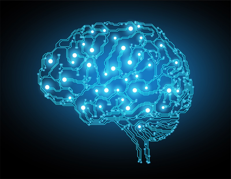 brain-cells.jpg