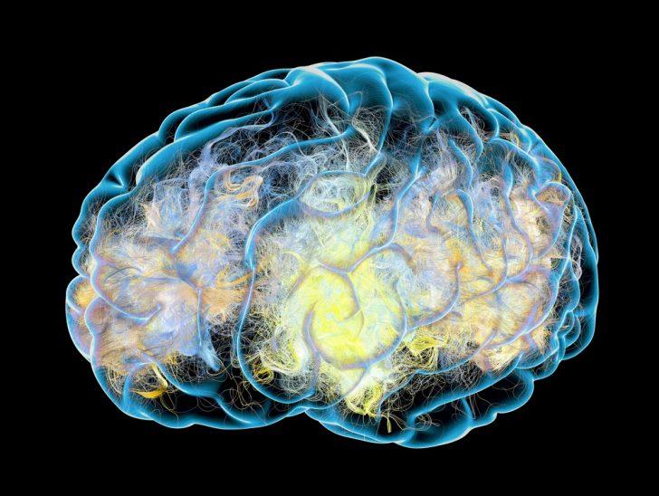 brain-deterioration