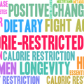 caloric restriction