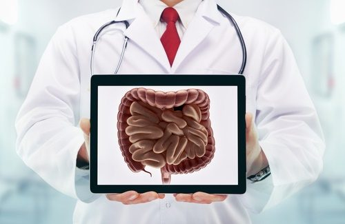 doctor with intestinal system picture