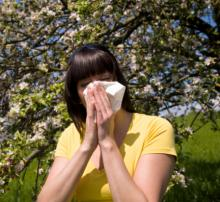 hay fever allergies.jpg