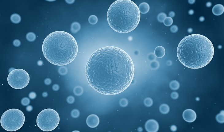 illustration-of-human-cells