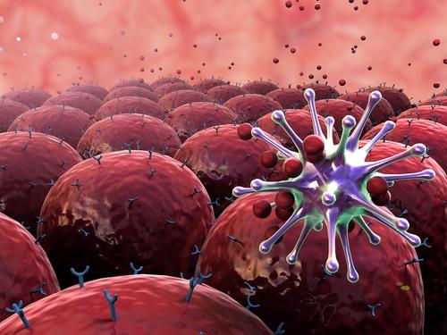immune-system-cell.jpg