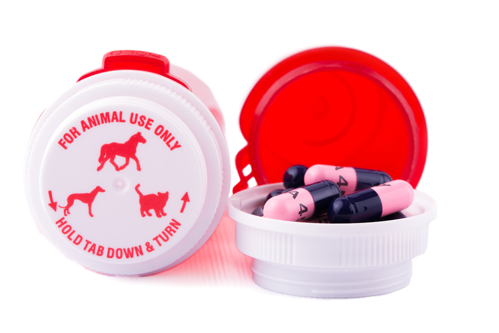 medication for pets