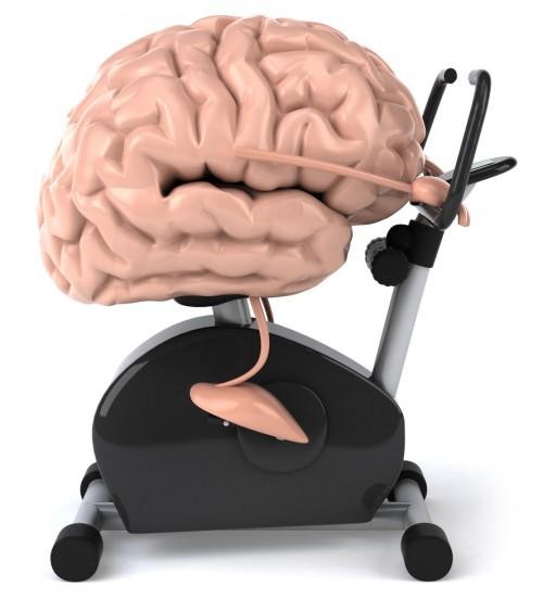 mental workout cartoon