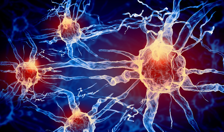 nerve-cells.jpg