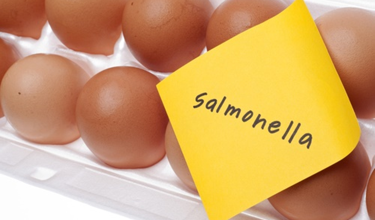 salmonella-eggs.jpg