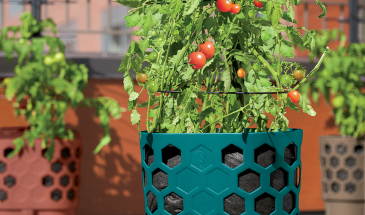 tomato_planter_photocredit_gardeners_supply_company