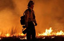 wildfires_456px.jpg